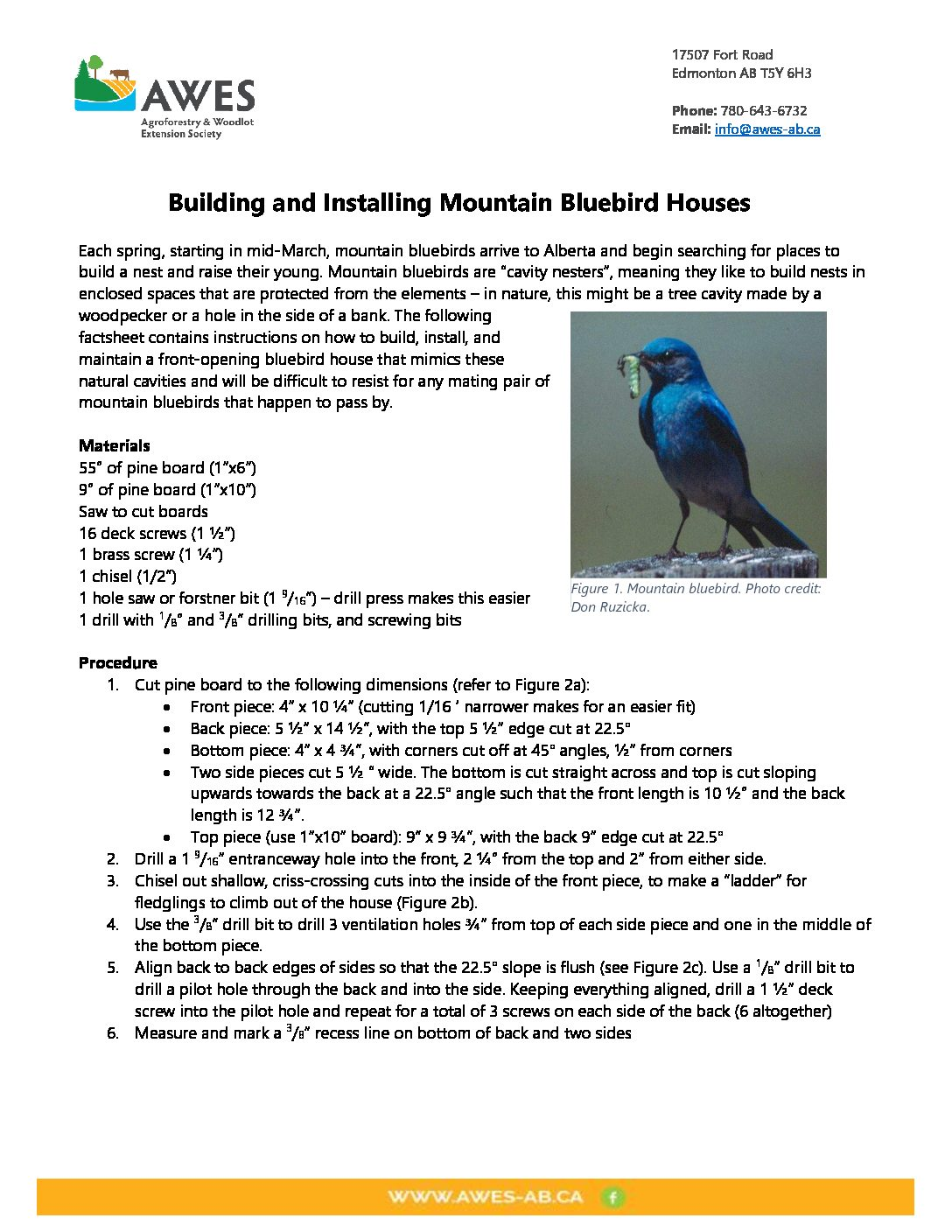 Building and Installing Bluebird Houses