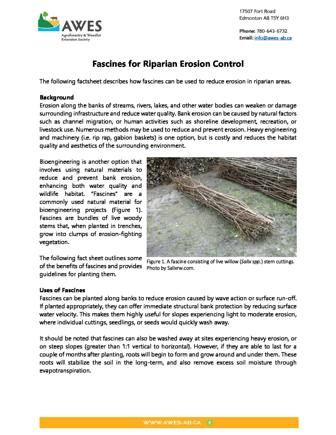 Fascines for Riparian Erosion Control