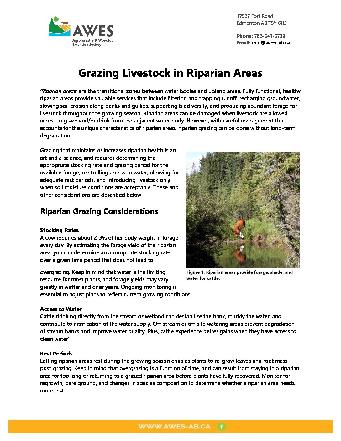 Grazing Livestock in Riparian Areas