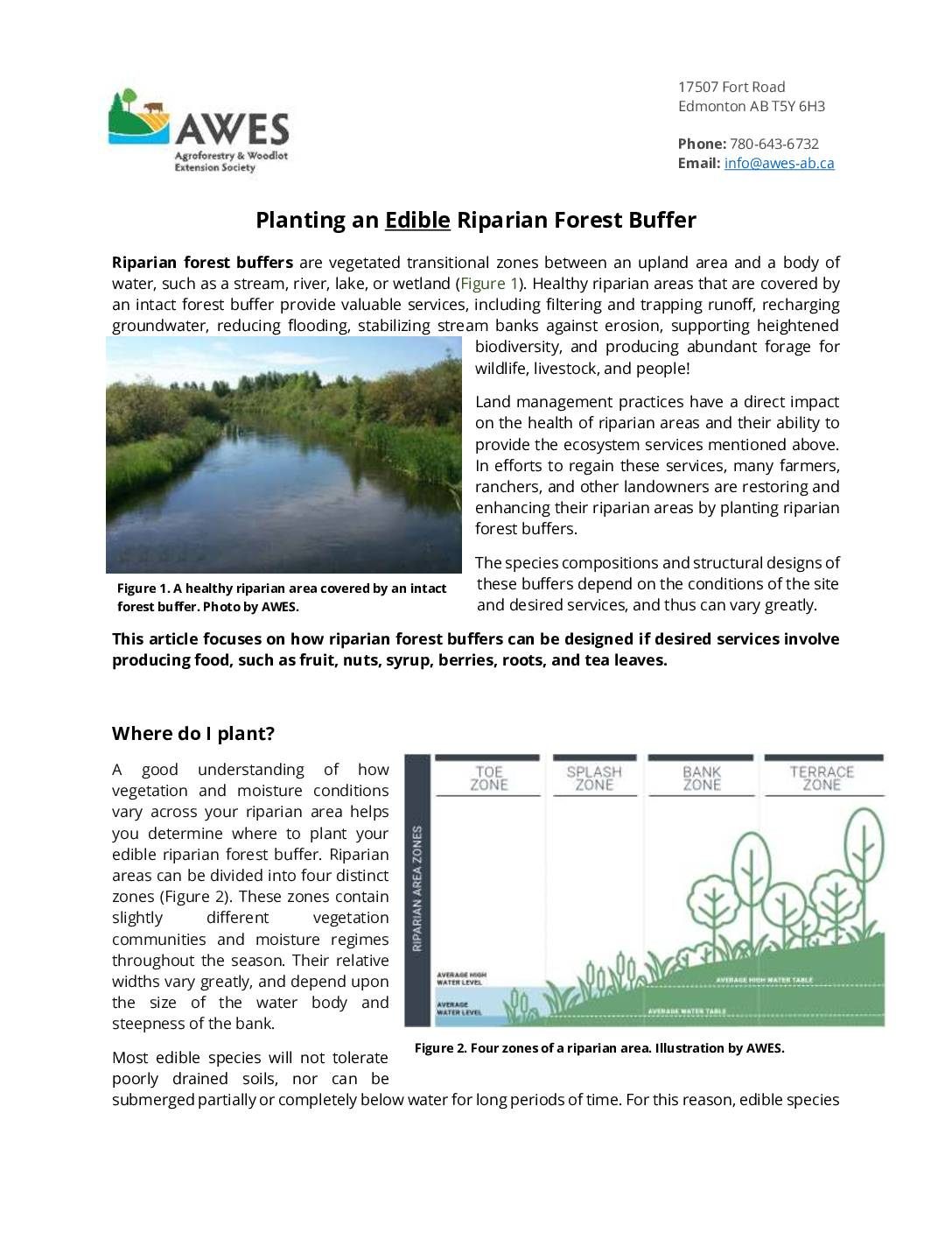Planting an Edible Riparian Forest Buffer