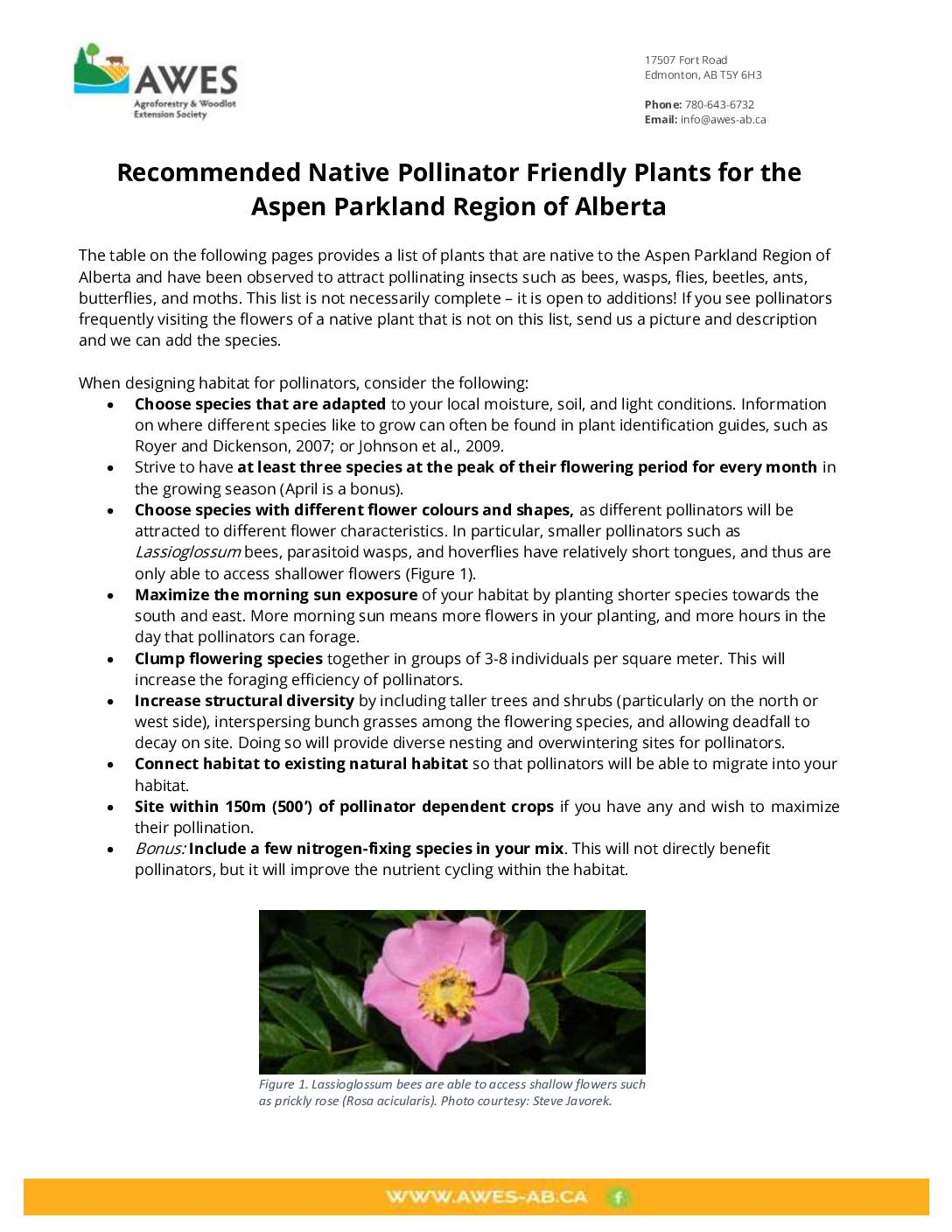 Recommended Native Pollinator Friendly Plants for the Aspen Parkland Region of Alberta