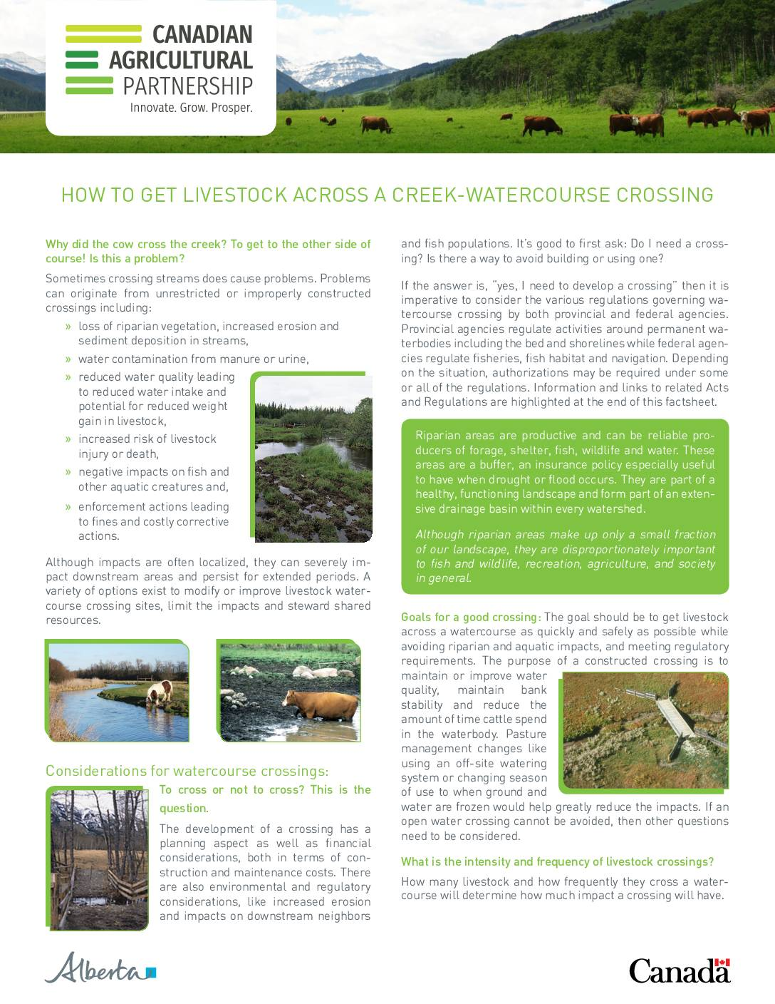CAP Recommendations for Livestock Watercourse Crossings