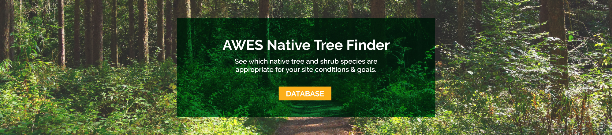Native Species Database