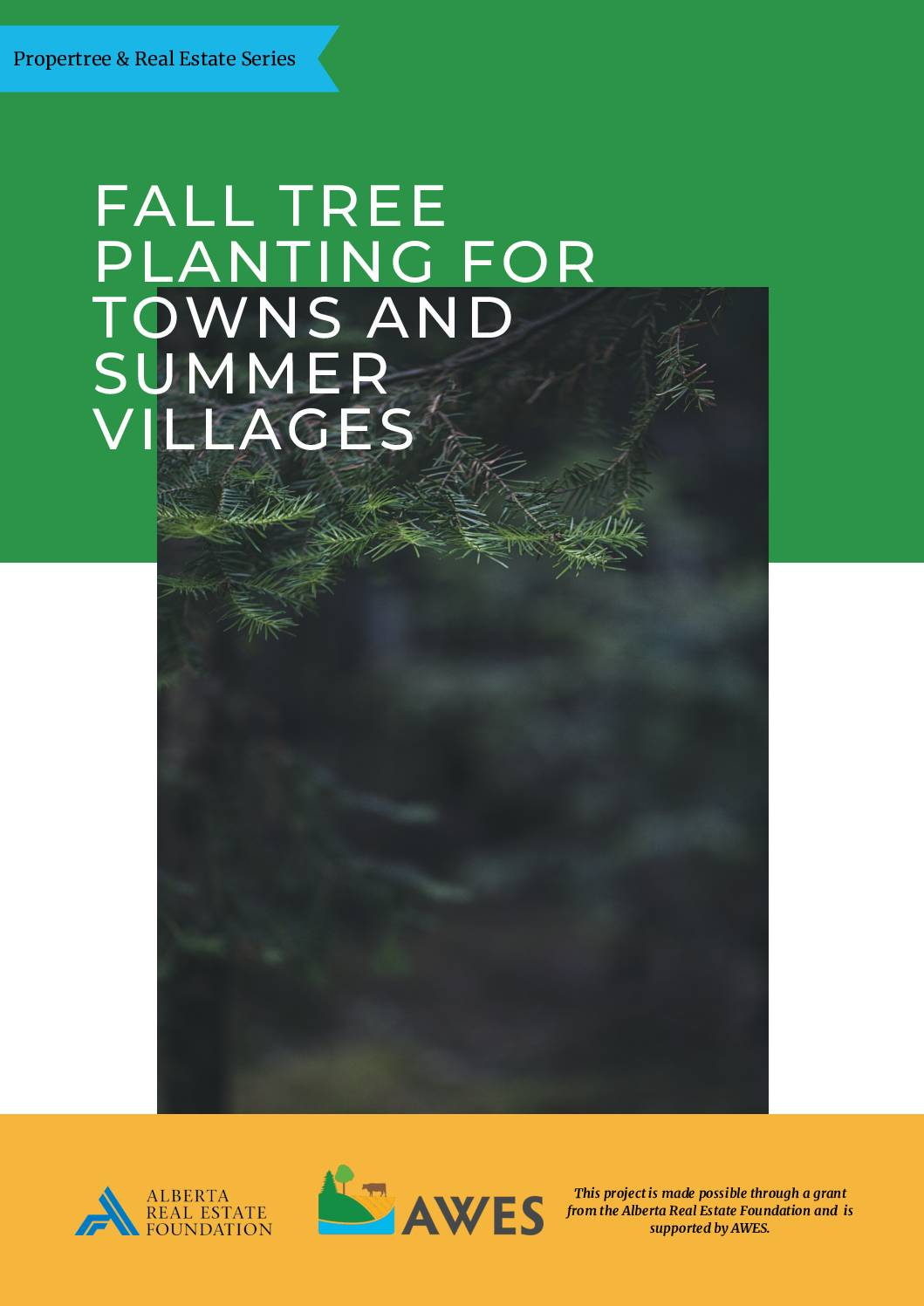 Fall Tree Planting for Towns and Summer Villages